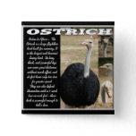 Ostrich Buttons and Ostrich Pins