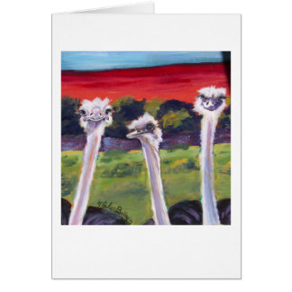 """Ostriches Greeting Card, Reads """"Just Thinkin of Ya Card"""