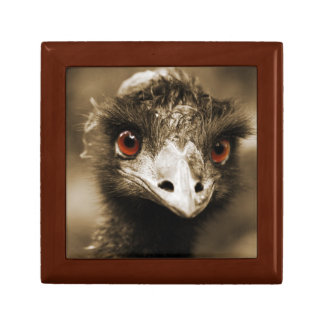 Ostriches Look gift / jewelry box