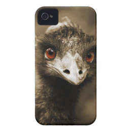 Ostriches Look iPhone case