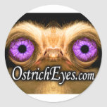 OstrichFace Small Sticker