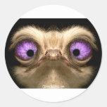 OstrichFaceCrossed Round Sticker