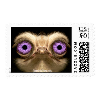OstrichFaceForward Postage