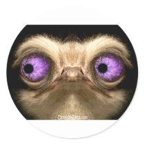 OstrichFaceLeft Classic Round Sticker