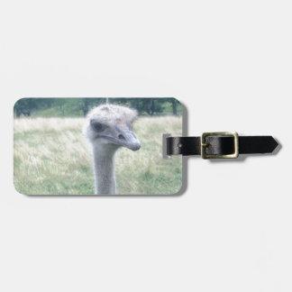 ostrichhead.JPG Bag Tag