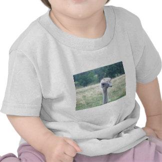 ostrichhead.JPG T-shirt