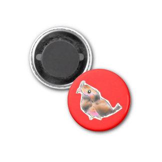 osutorariagamaguchiyotaka 1 inch round magnet