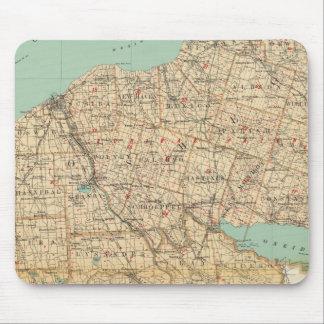Oswego, Cayuga, condados del Onondaga Alfombrillas De Ratones