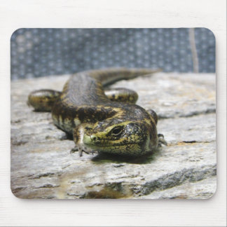 Otago Skink Mouse Pads