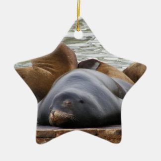 Otarias que duermen en el embarcadero ornaments para arbol de navidad