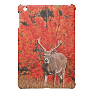 Other common name: Virginia deer. Near Lake iPad Mini Covers