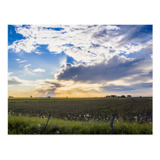Other Sunset Postcard