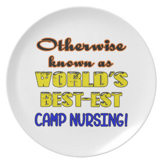 Otherwise known as world's bestest Camp nursing Dinner Plate
