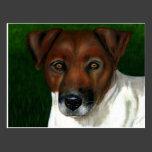 Otis - Jack Russell Terrier Art Postcard