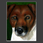 Otis - Jack Russell Terrier Art Postcards