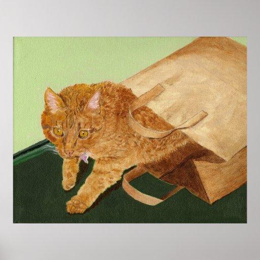 Otis the Cat Print