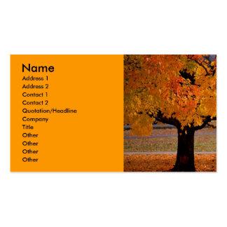 otoño (1), nombre, dirección 1, dirección 2, conta tarjetas de visita