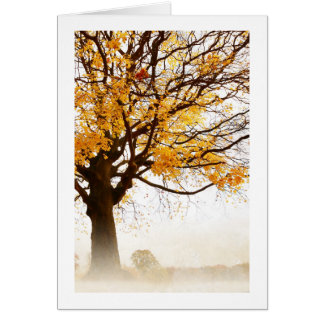 Otoño amarillo del árbol de arce en la niebla, tar tarjeta