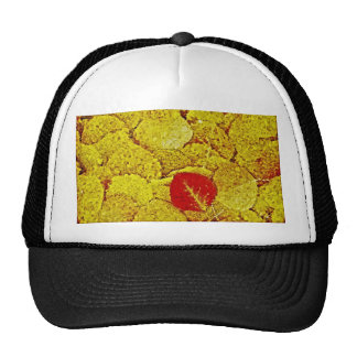 Otoño amarillo - gorra del arte de la pintura