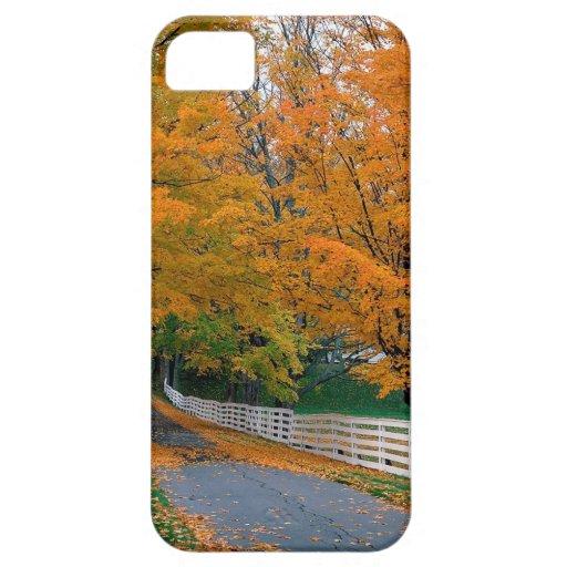 Otoño Backroad escénico New Hampshire iPhone 5 Carcasa