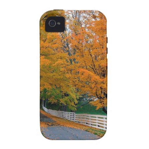 Otoño Backroad escénico New Hampshire iPhone 4/4S Carcasa