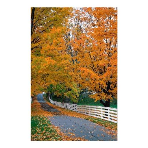 Otoño Backroad escénico New Hampshire Papeleria De Diseño