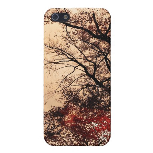 Otoño, caja del teléfono celular iPhone 5 coberturas
