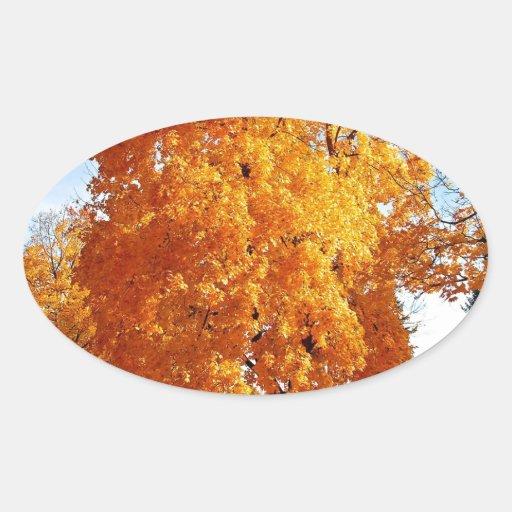 Otoño de la realidad del árbol calcomania ovalada