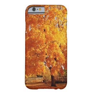 Otoño de la realidad del árbol funda para iPhone 6 barely there