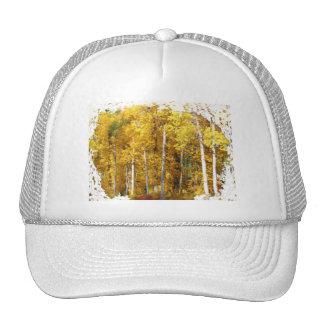 Otoño de los árboles de los álamos tembloses gorras