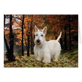Otoño de trigo de Terrier del escocés Tarjeton