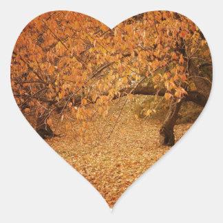 Otoño del Central Park - New York City Pegatina En Forma De Corazón