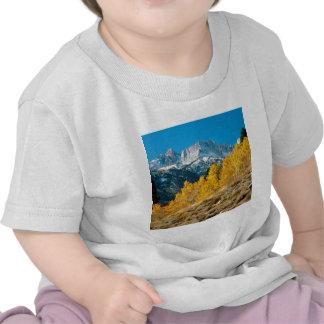 Otoño del parque en el diente de sierra máximo de  camisetas