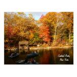 Otoño en el Central Park (color) Tarjetas Postales