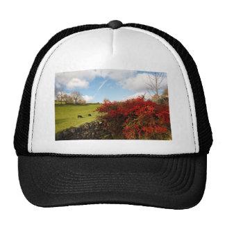 Otoño en el país gorra