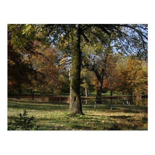 Otoño en el parque de estado del lago Benson Postal