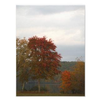 Otoño en la punta de flecha del lago impresiones fotográficas