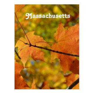 Otoño en Massachusetts Tarjetas Postales