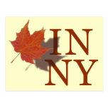Otoño en Nueva York Tarjeta Postal