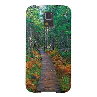 Otoño Fundy Nuevo Brunswick Carcasa Para Galaxy S5
