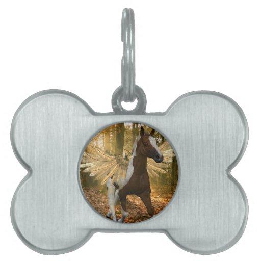Otoño Pegaso Placas Mascota