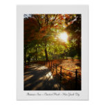 Otoño Sun - Central Park - New York City Posters