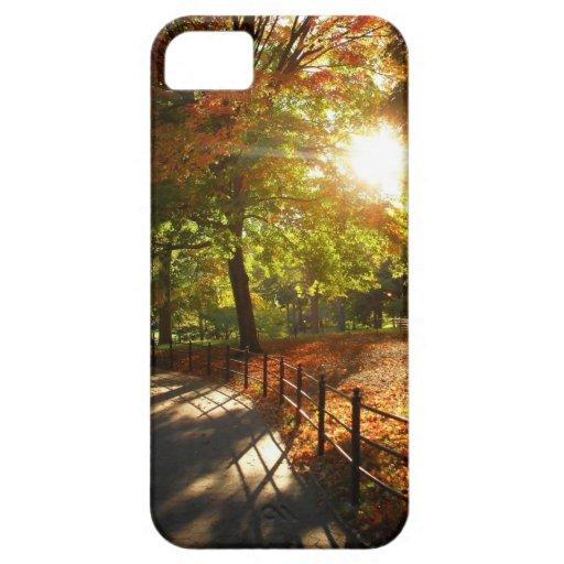 Otoño Sun en Central Park - New York City iPhone 5 Carcasas