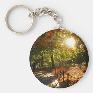 Otoño Sun en Central Park, New York City Llavero Redondo Tipo Pin