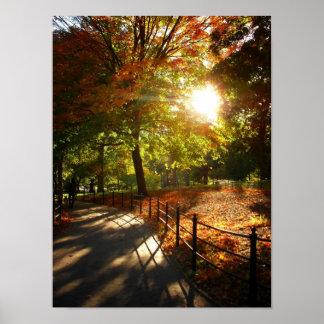 Otoño Sun en Central Park NYC pequeño Posters