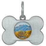 Otoño View.jpg del condado de Boulder Colorado Placas De Mascota