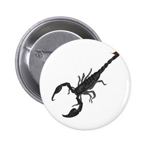 Otro escorpión negro imperial pins
