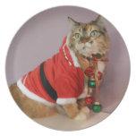 Otro gato de Santa del navidad Plato Para Fiesta