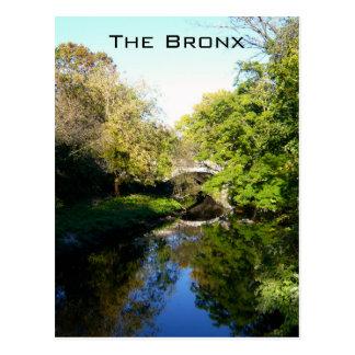 Otro lado del Bronx Postal