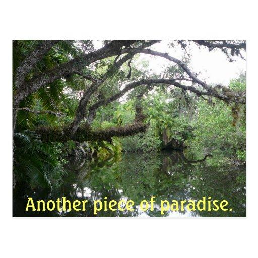 Otro pedazo de paraíso tarjetas postales
